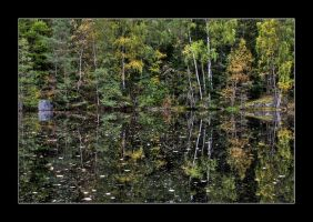 autumn waterscape II by OrisTheDog