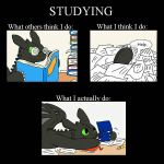 Basic Studying by Hylozoistic