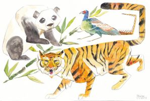 Animals of East Asia by flutterdoodle