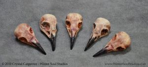 Bird Skulls by soulofwinter
