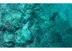 Turquoise Meditation by Limaria