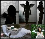 Felt Wings .:. Gray.White for Pyaun17 by Kamakru