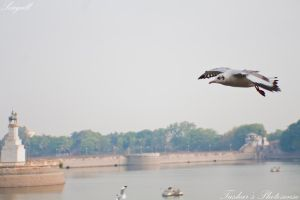 At Lakhota Lake 06 by TusharBoss