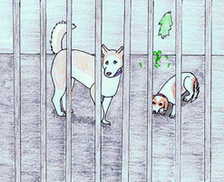 Wilty event - Jailhouse dogs by horseg27