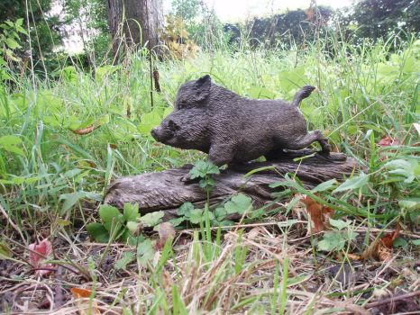Wild boar by woodcarve