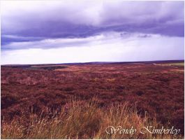 Out on the wiley windy moor (2012) by WendyKimberley