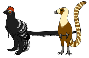 Anchiornis and Sinosauropteryx by StygimolochSpinifer