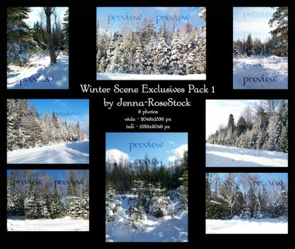 Winter Scene Exclusives 1 by Jenna-RoseStock