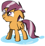 Wet Scootaloo by Bigshot232