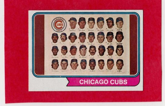 1973 Chicago Cubs 4 by danwind
