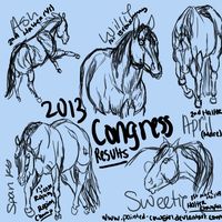 2013 Congress Results by painted-cowgirl