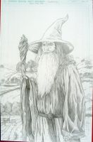 Gandalf, the Grey by RafaConte