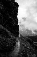 The narrow path by LinsenSchuss
