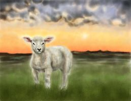 Little Lamb by TaraSullivan