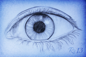 The Human Eye by RicGrayDesign
