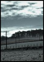 Fields of Gray by impgrrrl