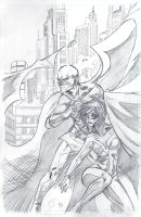Casswing and Red Robin by FSbot