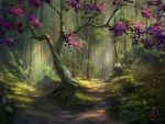The Path Less Traveled by jjpeabody
