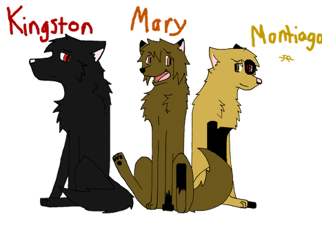 Kingston, Montiago, and Mary by Ask-Ookami-Cuba