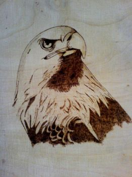 Eagle- First Pyrography by godgott