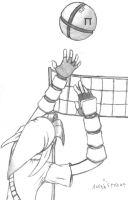 link playing volleyball by oldarmodillo