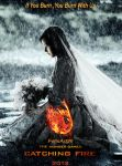 Catching Fire Poster by fillesu96