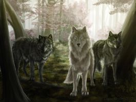 Wolf forest By RC by RickyC213