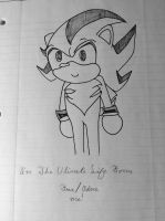 Adorable Shadow by Kirby1200