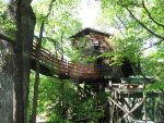 Tree House Stock by celticstrm-stock by CelticStrm-Stock