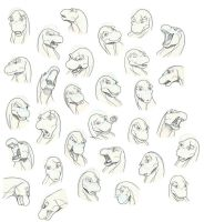 More expressions by orca-orrinus