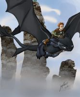 How to train you dragon by Kiraships