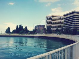 Summer by the Water by aBookReadersLife