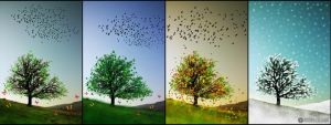 colorful seasons by adypetrisor