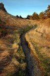winding path by LucieG-Stock