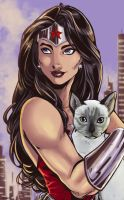 Wonder Woman loves cats by ArtCrawl
