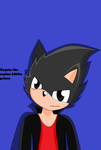 Vegeta As Sonic Kittha~ by xlightbluesnowflakex