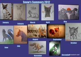 Snows Summary 2012 by Snowstorm-wolf