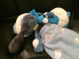 Sleeping Riolu Plush with Altaria Pillow by shuufly