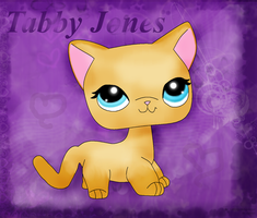 .:Tabby Jones-for LPS4ever's Contest:. by AgraelLPS