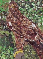 Eagle Collage by Saphiroko
