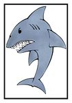 Shark card by wheelgenius