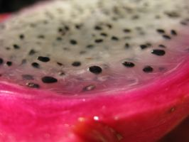 Dragonfruit 3 by thanxforthefish