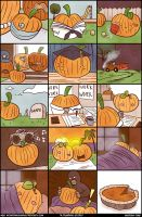 A Pumpkin Story by Wonderwig