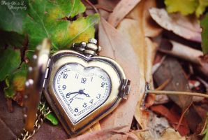 Love Stops Time by FortySixand2Photos