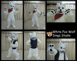 White Fox Wolf by Dingz