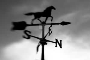 Wind Vane LensBaby by Ryan-Warner