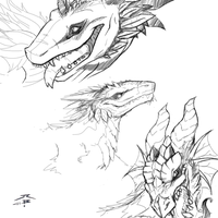 Dragons Sketches by GRAVEMIND1110