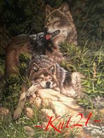 Wolf painting different light by Kut21
