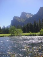 Yosemittee 5 by WillowTreeWitch