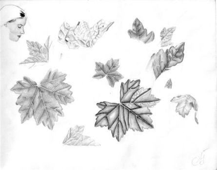 LEAVES 1 by 5antiago